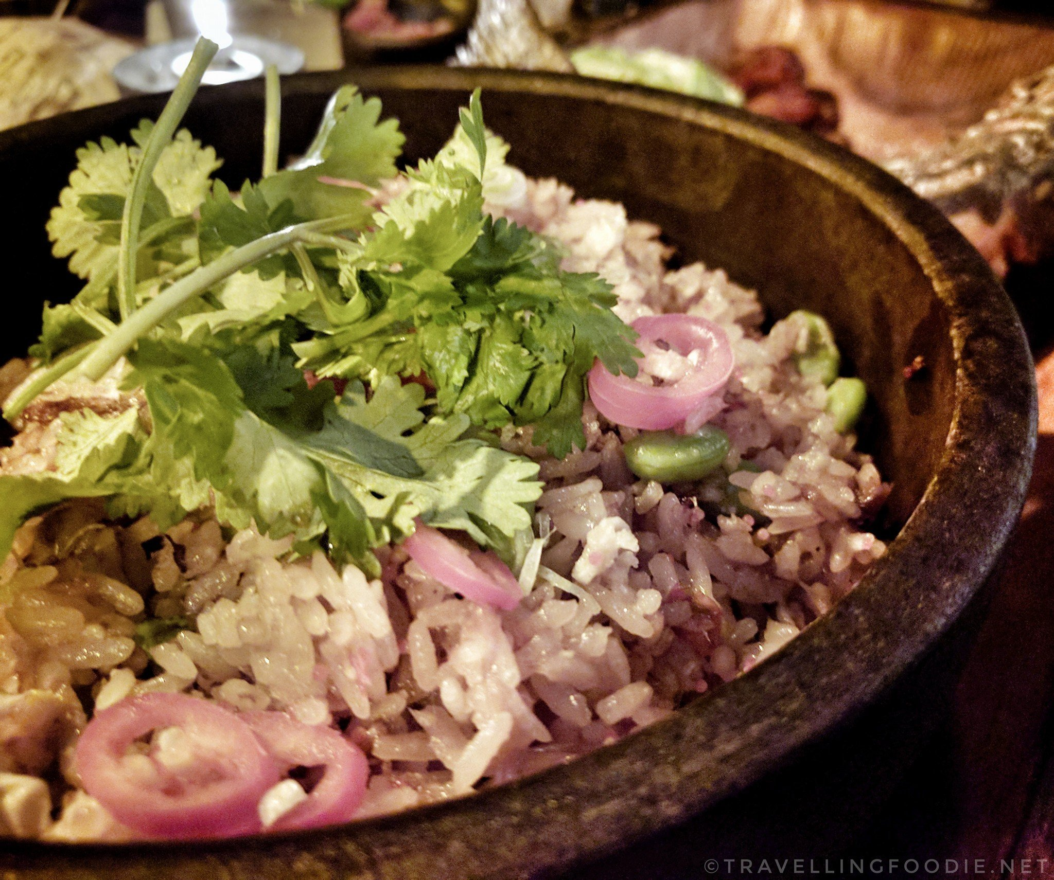 Travelling Foodie Eats OG Duck Chaufa at Baro Toronto