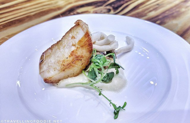 e11even at Cuisine & Cuvée: Diver Scallop w/ Truffled Celeriac Puree, Honey Mushrooms, Bacon Jam