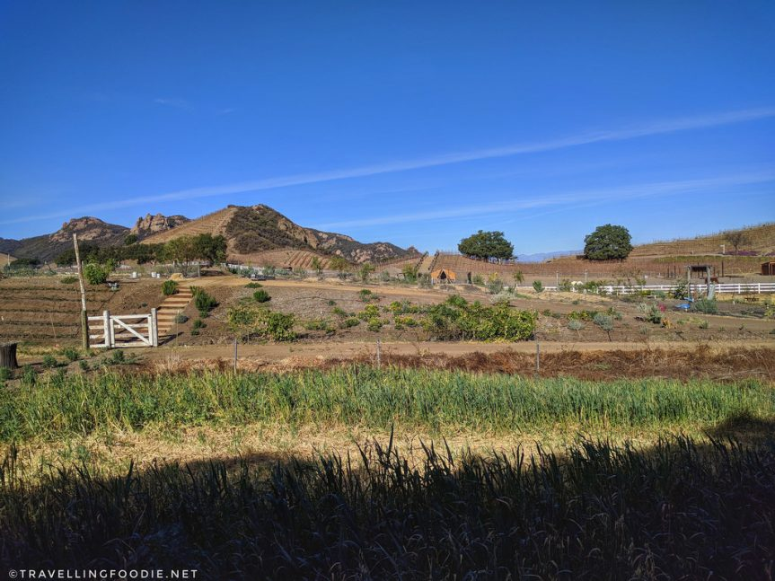 2 Day Trip in Conejo Valley, California: 7 Places To Eat, Play and Stay