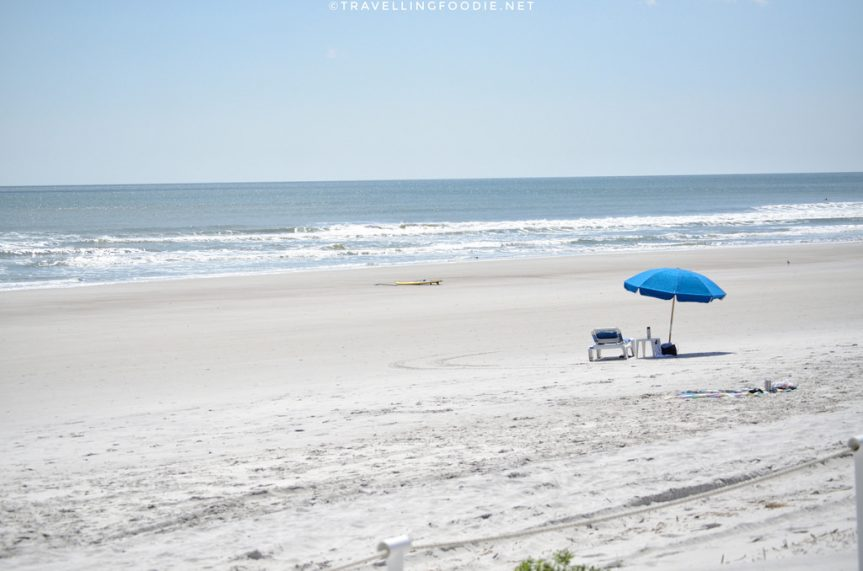 Jacksonville, Florida: One Day Travel Guide