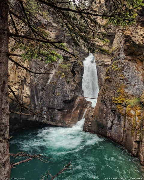 Framing Johnston Canyon Lower Falls at Banff National Park, Alberta, Canada