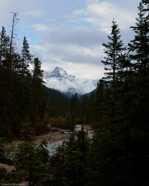 Views from Takakkaw Falls Trail in Yoho National Park, British Columbia, Canada