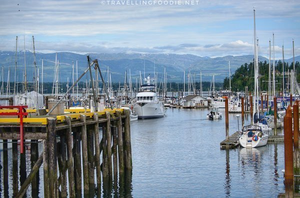 Fisherman's Wharf Vessel Tours at Comox Marina in Comox Valley, British Columbia