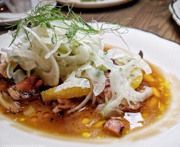 Grilled Octopus at Bridgette Bar in Calgary, Alberta