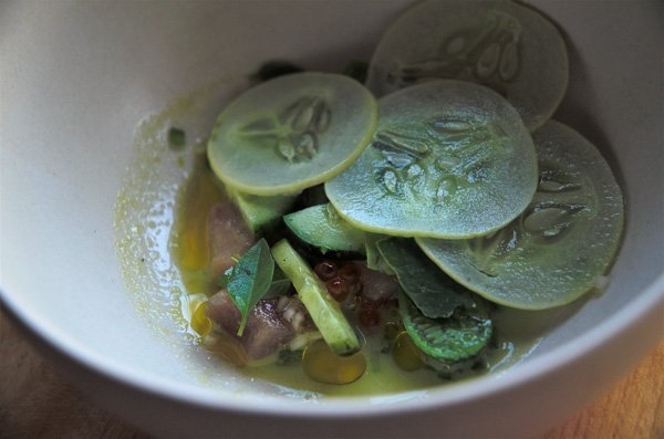 Albacore Tuna - Canis Restaurant - Toronto, Ontario, Canada