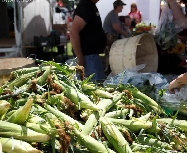 Fresh Corn at Haliburton County Farmers' Market in Haliburton, Ontario