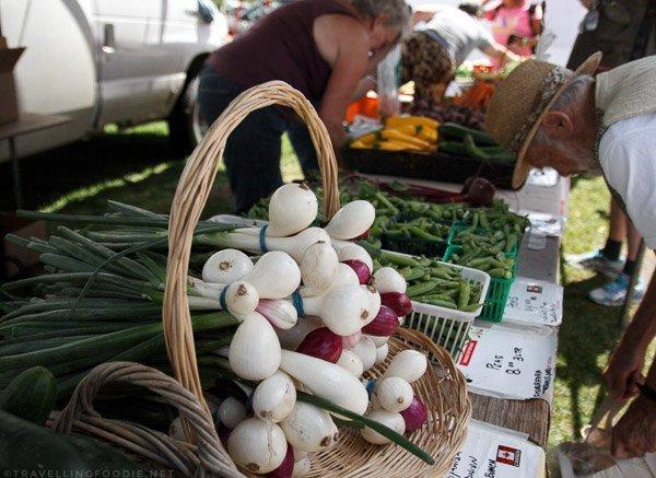 Fresh Vegetables at Haliburton County Farmers' Market in Haliburton, Ontario