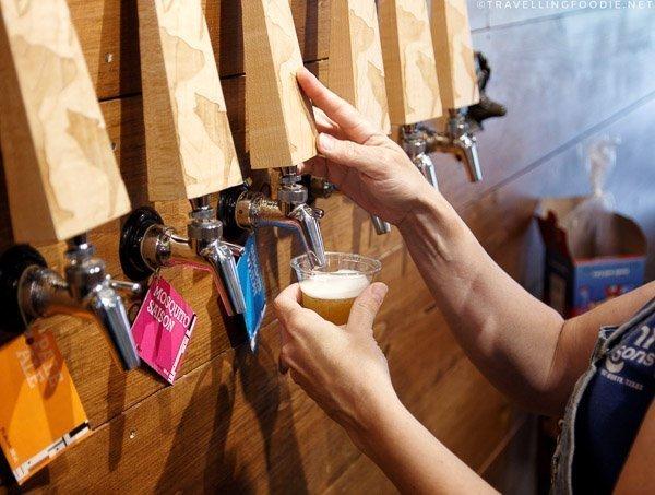Beer tasting at Haliburton Highlands Brewing