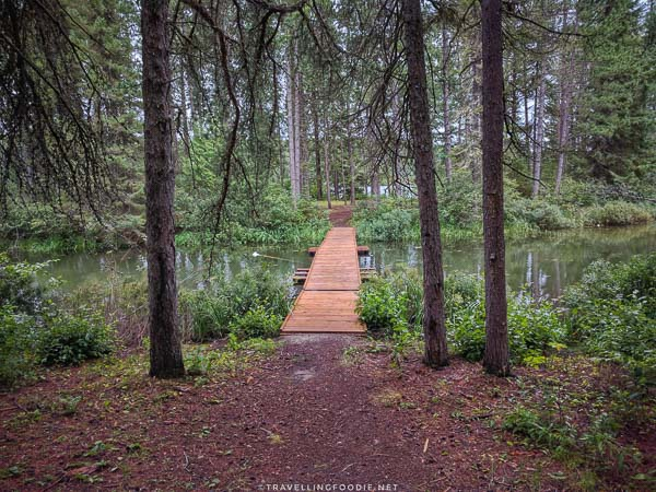 A bridge to a small island in Saw Lake at Ivanhoe Provincial Park in Sudbury, Ontario
