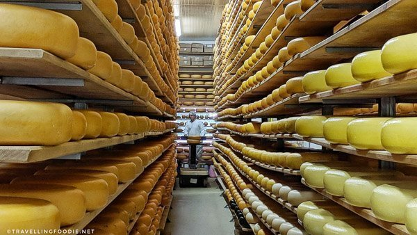 Aging Room of Mountainoak Cheese in New Hamburg, Oxford County, Ontario
