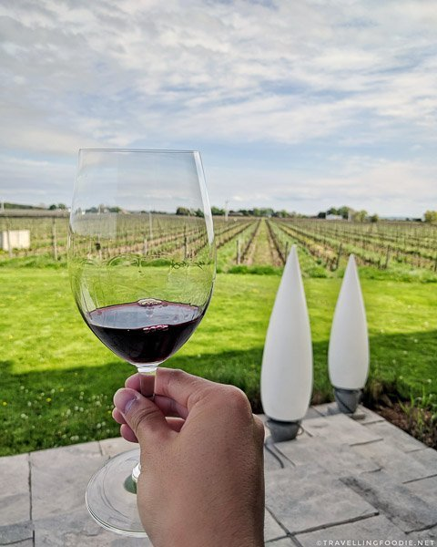 2014 Stratus Red at Stratus Vineyards in Niagara-on-the-Lake, Ontario