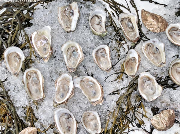 Malpec Oysters from Rodney's Oyster House at Toronto Taste 2017