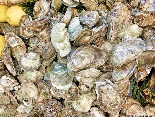 Malpec Oysters from Pure Spirits Oyster House
