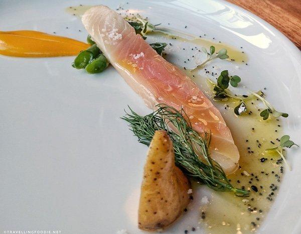 Marbled King Salmon Gravlax