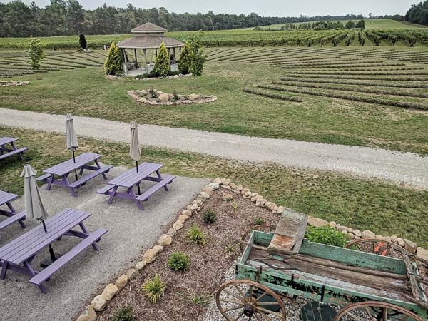 Bonnieheath Estate Lavender and Winery in Waterford, Norfolk County, Ontario