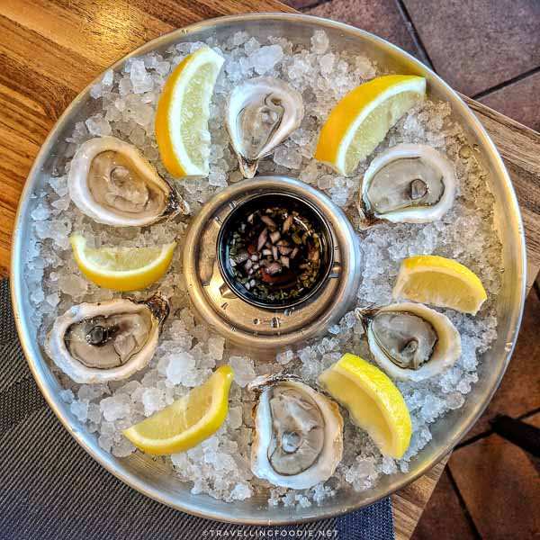 Oysters at [catch] Urban Grill in Delta Hotel in Fredericton, New Brunswick