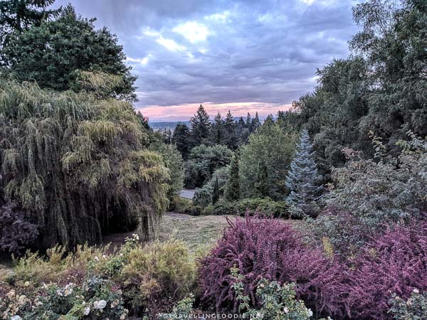 View of International Rose Test Garden in Portland, Oregon