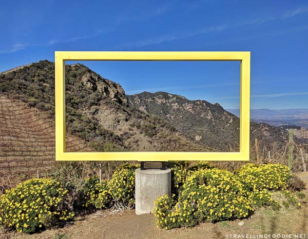Yellow Rectangle Sculpture at Malibu Wine Hikes in Conejo Valley, California