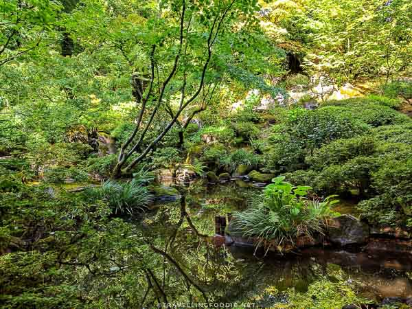 The Natural Garden at Portland Japanese Garden in Portland, Oregon