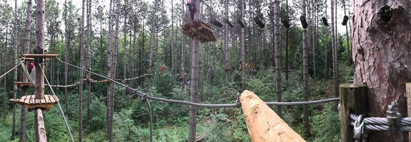 Treetop trekking in Ganaraska Forest in Port Hope, Ontario