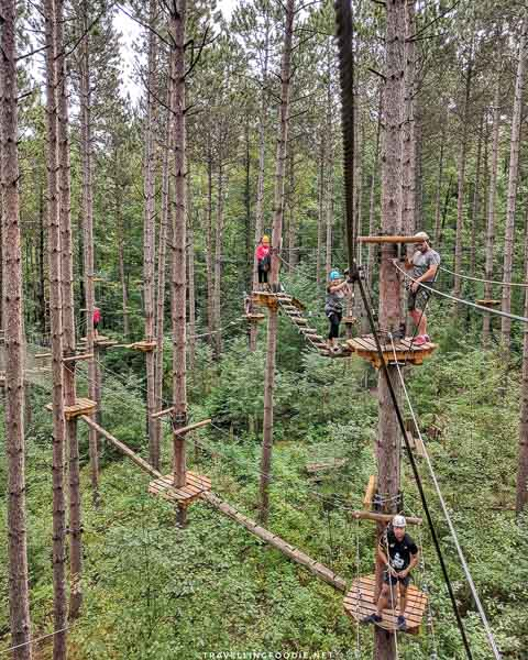 Treetop trekking in Port Hope, Ontario