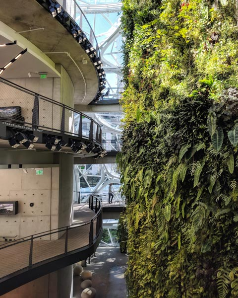 Living Wall at Amazon Spheres in Seattle, Washington
