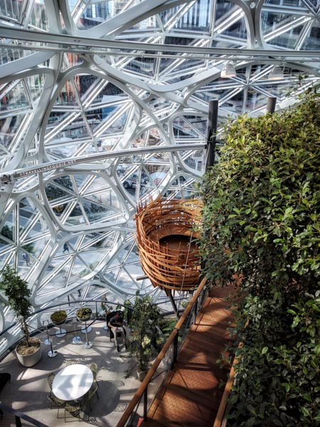 Bird's Nest at The Amazon Spheres in Seattle, Washington