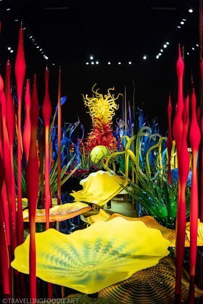 Mille Fiori at Chihuly Garden