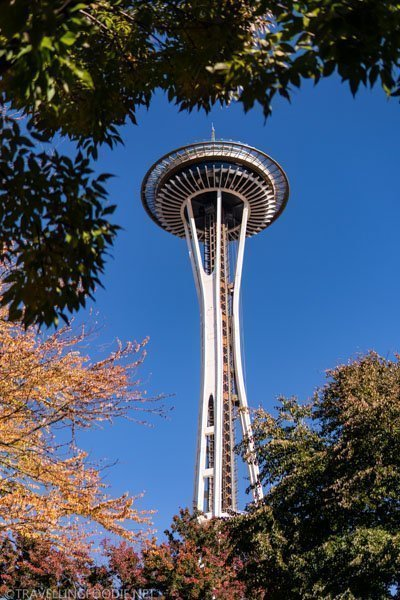 Fall-framing Space Needle in Seattle, Washington