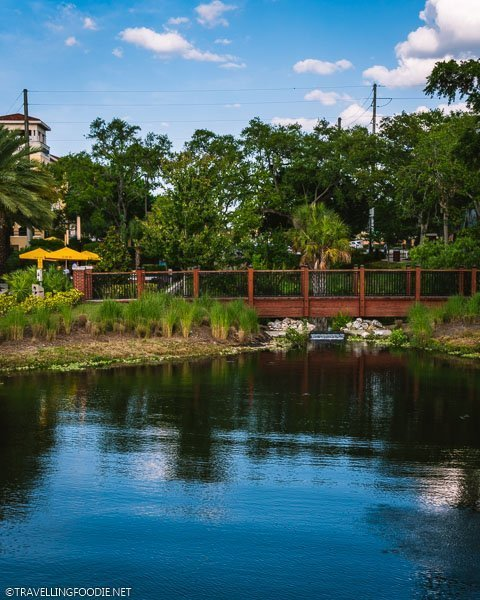 Ulele Springs in Tampa Bay, Florida