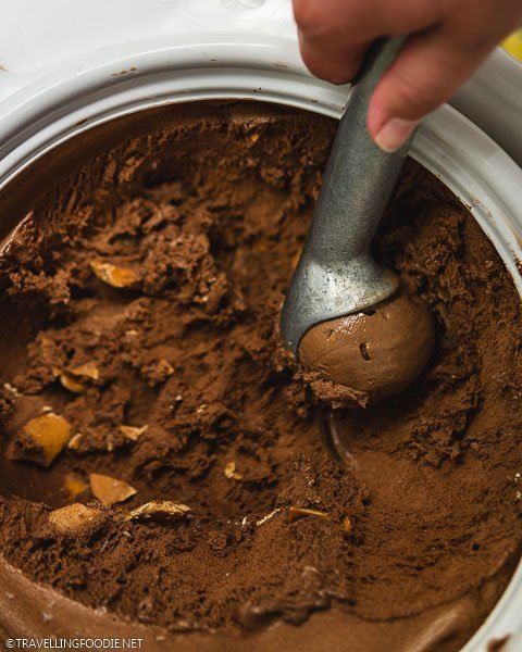 Peanut Butter Chocolate Mudpuddle Ice Cream from London Ice Cream Company