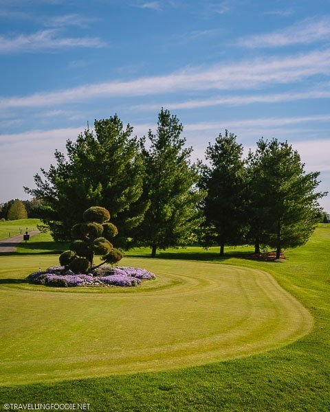 Golf Lawn at Caradoc Sands in Strathroy, Ontario