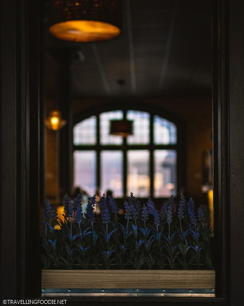 Flowers at Clock Tower Bistro in Strathroy, Ontario