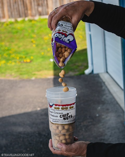 Pouring Sour Cream Potato Chip Covered Peanuts at Picard's Peanuts in Middlesex County, Ontario