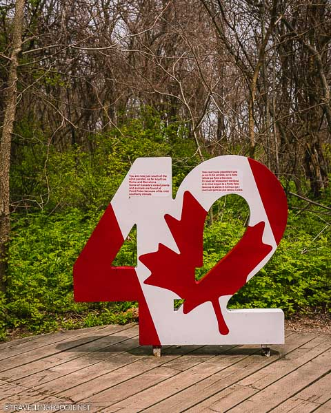 42nd Parallel Sign at Point Pelee National Park in Leamington, Ontario