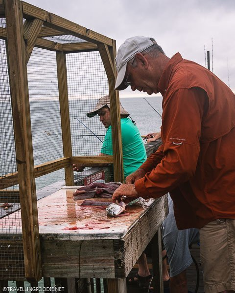 Fillet and Descale Fish at Sunglow Pier in Daytona Beach