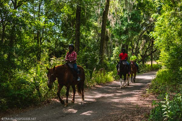 Horseback Riding Tour at The Canyons Zip Line in Ocala, Florida