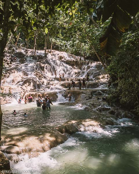 Nearing the top of Dunn's River Falls in Ocho Rios, Jamaica