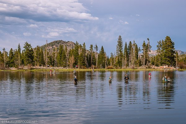 Ten People fly fishing at Sprague Lake in Rocky Mountain National Park, USA