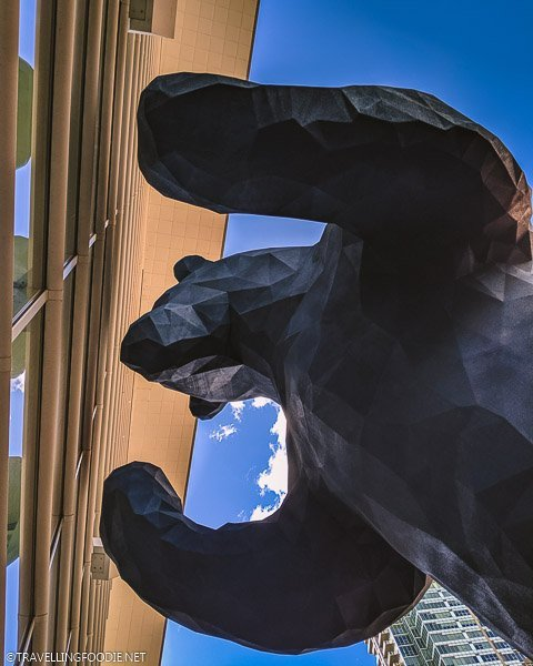 Looking up to see Big Blue Bear Sculpture at Colorado Convention Center in Denver