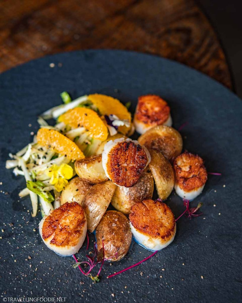 Pan-Seared Scallops at Shuck Halifax