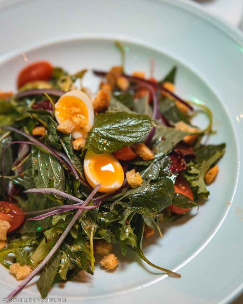Organic garden greens salad at Trio Restaurant in Puerto Vallarta, Mexico