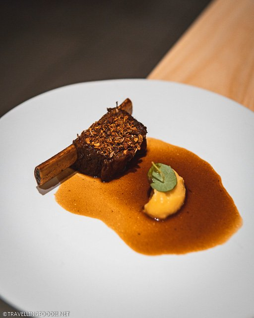 Bison Rib from Winter Tasting Menu 2019 at Frilu Restaurant in Toronto, Ontario