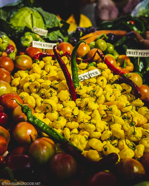 Peppers in Farmers Market at Agriculture and Food Fair in St. Croix, US Virgin Islands