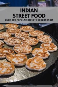 Indian Street Food: Must-Try Popular Street Foods in India - Food Guide on Travelling Foodie