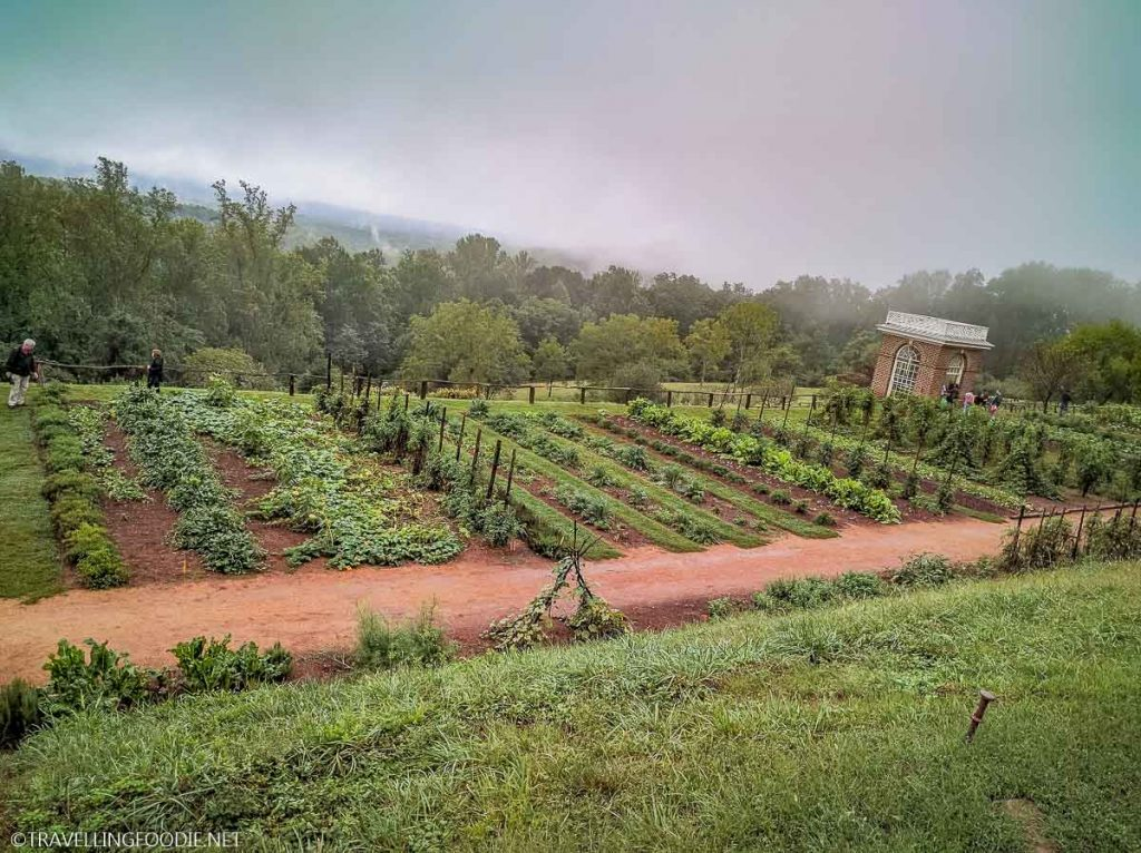Garden with Shed at Monticello in Charlottesville, Virginia