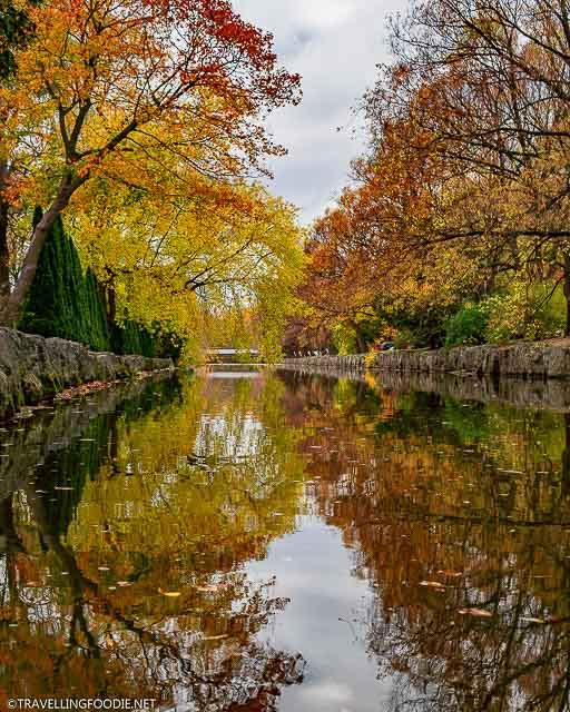 Avon River fall foliage reflections at the Shakespearean Gardens in Stratford, Ontario