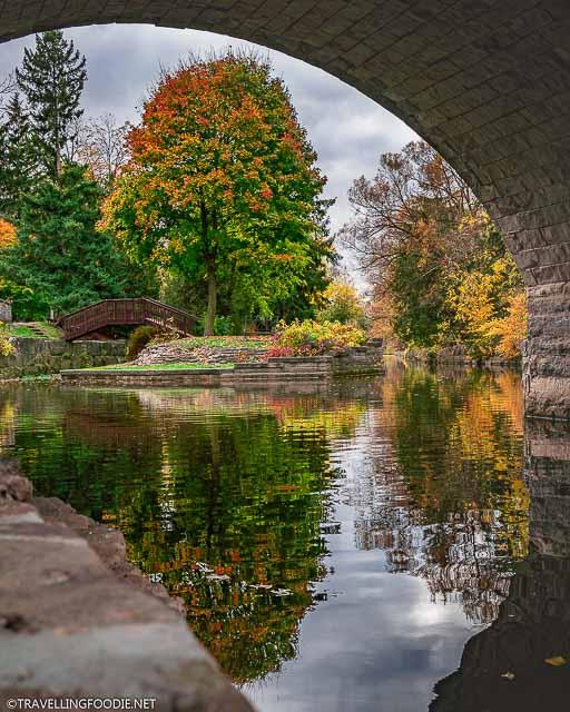 Framing the Shakespearean Gardens Mini Island under Ontario's oldest double-arch stone bridge in Stratford