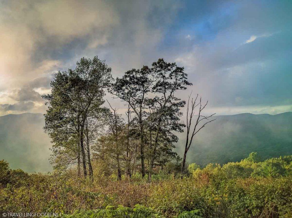 Fall Colors at Shenandoah National Park in Virginia, Virginia