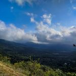 Sunny with Clouds and Bird at Shenandoah National Park, Virginia